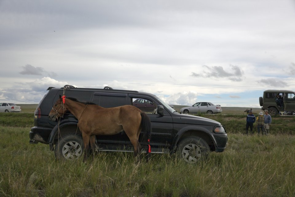 A horse tied to an off-road vehicle before the yearly Naadym horse race. Owning horses is considered a matter of prestige and wealth by many Tuvans, and the yearly Naadym horse race requires a lot of money and effort and rarely pays off. Tos-Bulak, Tuva, Russia.