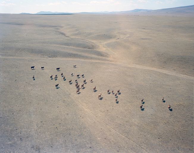 Mongolian steppe near Sharyn Gol mine seen from helicopter landing